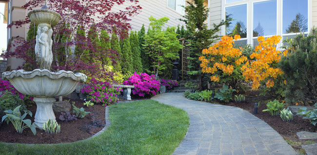 Landscaping services near me in Broward County Florida
