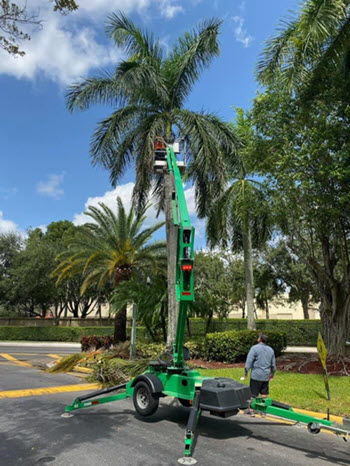 Weston Florida Tree Care by EPS Landscaping & Tree Service LLC