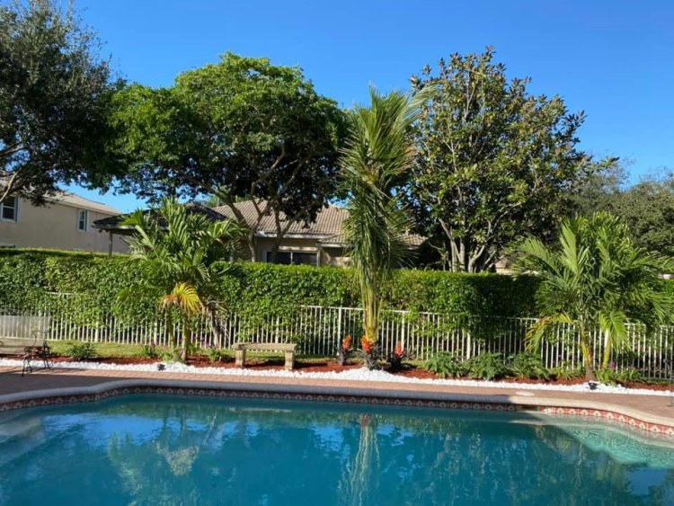 Factors To Consider When Designing Your Landscape in Dania Beach