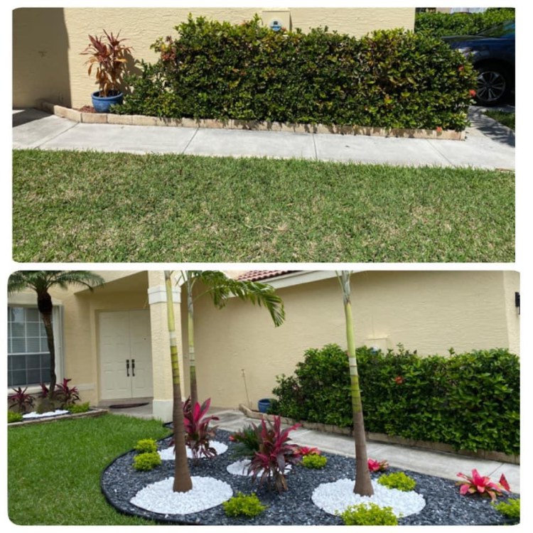 Easy To Maintain Lawn Grass To Consider For Your Yard in Dania Beach