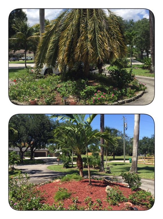 3 Super-Important Steps To Take Before Sod Installation in Pembroke Pines