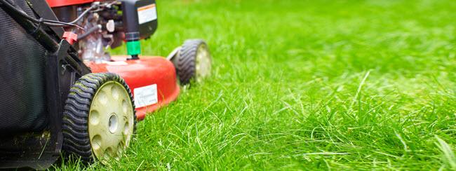Pembroke Pines Lawn Care Service Near Me